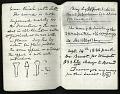 View Joseph Henry Notebook, Sound, Ear Trumpets, Light Houses, 1866 digital asset number 10