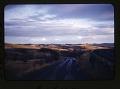 View Pronghorn Antelope; Oklahoma National Wildlife Refuge; Washington State Blue Mountains Vegetation, 1947-1954 digital asset: 10 miles south of Pullman, Washington, on US I95 (?), by Helmut K. Buechner, February 1953. [Image no. SIA2014-00011]