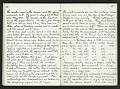 View Field notes, 1880 (1 of 2) digital asset number 2