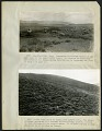 View Albert Spear Hitchcock - brief report on a trip to Ecuador, Peru and Bolivia, May 25, 1923-February 18, 1924 digital asset number 1