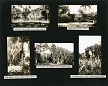 View #587-#778; #1316A-#1448 A. A. S. Hitchcock : British Guiana, 1919-1920, Washington, D.C., including SI and Rock Creek Park; Cuba; Colorado and Wyoming, 1918 digital asset number 3