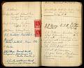 View Field notes by William M. Mann, Fiji Islands, 1915-1916 digital asset number 1