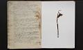 View Journal, 1855-1856 digital asset number 2
