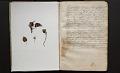 View Journal, 1855-1856 digital asset number 1
