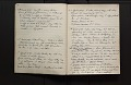View Diary of insects, etc., chiefly hymenoptera collected by A. W. Stelfox, 1929-20-31, vol. 3 digital asset number 1