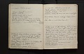 View Diary of insects, etc., chiefly hymenoptera collected by A. W. Stelfox, 1929-20-31, vol. 3 digital asset number 4