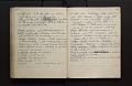 View Diary of insects, etc., chiefly hymenoptera collected by A. W. Stelfox, 1929-20-31, vol. 3 digital asset number 7