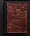 View Vol. 5, diary of insects, etc, chiefly hymenoptera collected by A. W. Stelfox, 1932-1933 digital asset number 0