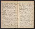 View Diary, 1873-1874 digital asset number 2
