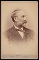 View Portrait of Charles Devens (1820-1891) digital asset number 0