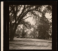 View Automobiles; Andrew Jackson Downing Urn on Smithsonian Grounds digital asset number 2