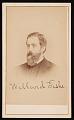 View Portrait of Willard Fiske (1831-1904) digital asset number 0
