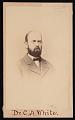 View Portrait of Charles Abiathar White (1826-1910) digital asset number 0