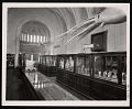 View Exhibition of Marine Invertebrates, Smithsonian Institution Building, or Castle digital asset number 0