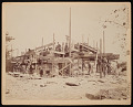 View National Zoological Park, Construction - Animal House (Lion House) digital asset number 0