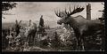 View Hall of North American Mammals, Natural History Building - Moose Habitat Group digital asset number 0