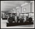 View Paleobotany Exhibits, Division of Paleontology, Natural History Building digital asset number 0