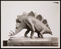 View Division of Paleontology, Miniature Model of a Stegosaurus digital asset number 0