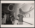 "View ""Shark!"" Exhibition Opening, National Museum of Natural History digital asset number 0"