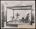 View Ethnology Exhibit, Natural History Building - Life Groups digital asset number 0