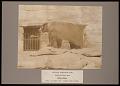 "View National Zoological Park, Alaska Peninsula Brown Bear ""Buster"" digital asset number 0"
