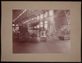 View Louisiana Purchase Exposition, St. Louis, Missouri, 1904 digital asset number 0