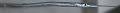 View Platybelone argalus digital asset number 2