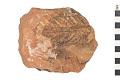 View Fossil Fern digital asset number 0