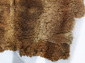 View Possum Skin Cloak digital asset number 17
