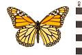 View Monarch digital asset number 1
