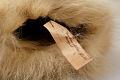View Dog Skin Mittens (1 Pair) digital asset number 2