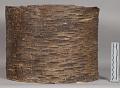 View Birch-Bark Scroll digital asset number 4