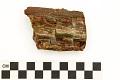 View Petrified Wood digital asset number 3