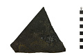 View Fossil Ray-finned Fish digital asset number 2