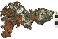 View Native Element Copper digital asset number 1
