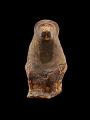 View Mummy, Baboon digital asset number 2