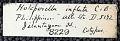 View Holoporella inflata Canu & Bassler, 1929 digital asset number 1