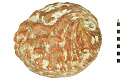 View Red Abalone digital asset number 1