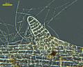 View Erythrocladia vagabunda M. Howe & Hoyt digital asset number 10