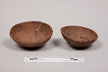 View Coconut Shell Cups digital asset number 0