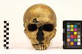 View La Ferrassie 1, Neanderthal Man, Fossil Hominid digital asset number 4