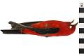 View Scarlet Tanager digital asset number 0