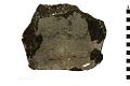 View Trilobite digital asset number 3