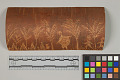 "View Etched Birchbark ""Pictograph"" digital asset number 2"