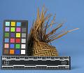 View Materials For Making Baskets digital asset number 10