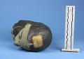 View Carved Stone Image digital asset number 5