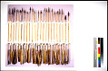 View Iron Pointed Arrows (10) digital asset number 0