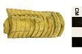 View Mollusk, Ammonite digital asset number 1