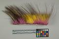 View Horsehair Headdress (Roach) digital asset number 3
