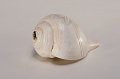 View Sea Shell Horn (Shankha) Or (Shunk) digital asset number 12
